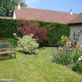 Banc dans mon jardin mai 2008