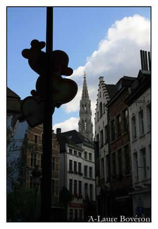 Bruxelles_735_copie