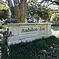 Audubon Park et Zoo (26)