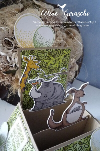 Carte Pop Up Animaux -4