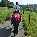 balade à cheval médiévale - Abbaye de Hambye (32)