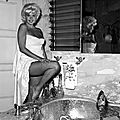 jayne_pink_palace-inside-bathroom-1963-a01-1