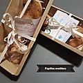 Plaisir d'offrir, shortbread aux épices et cookies avoine et chocolat