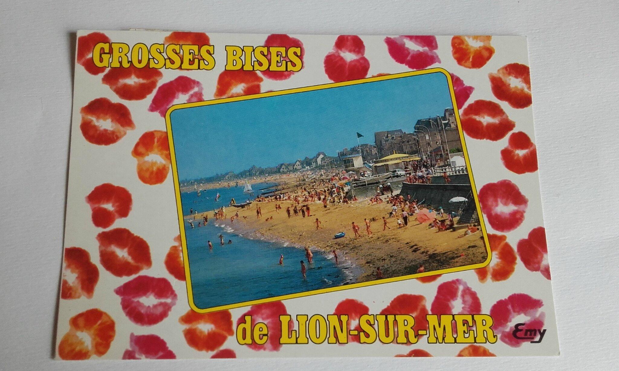 Lion sur mer datée 1992