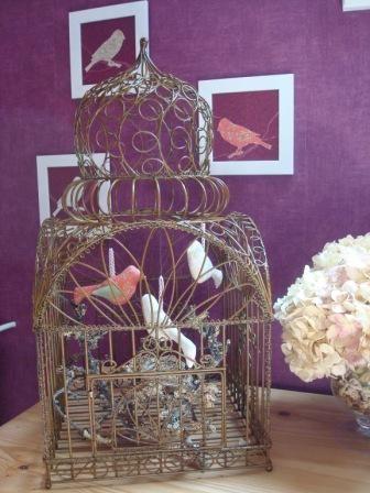 oiseaux en cage