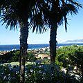 Panorama dal Cedro (1)