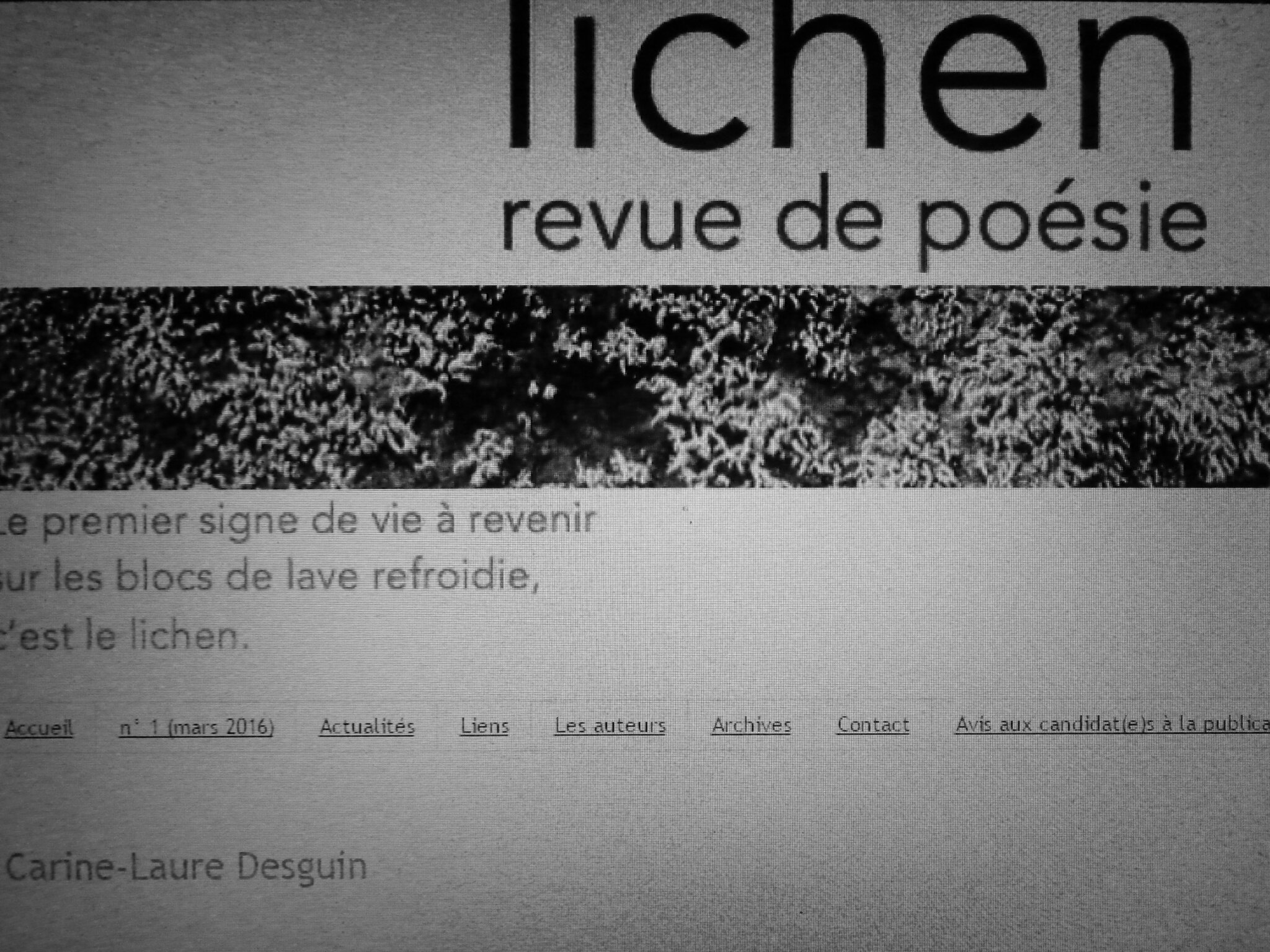 Dans Lichen 5, des textes inédits de Carine-Laure Desguin