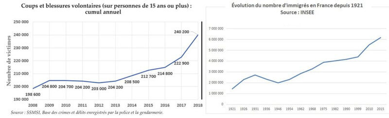 evolution_coups_et_blessures_immigration-1024x312 COURBE