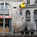 Nantes loire-atlantique enseigne