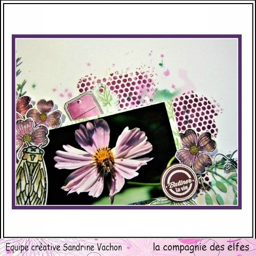 23 avril dt LCDE Sandrine VACHON sketch (3)