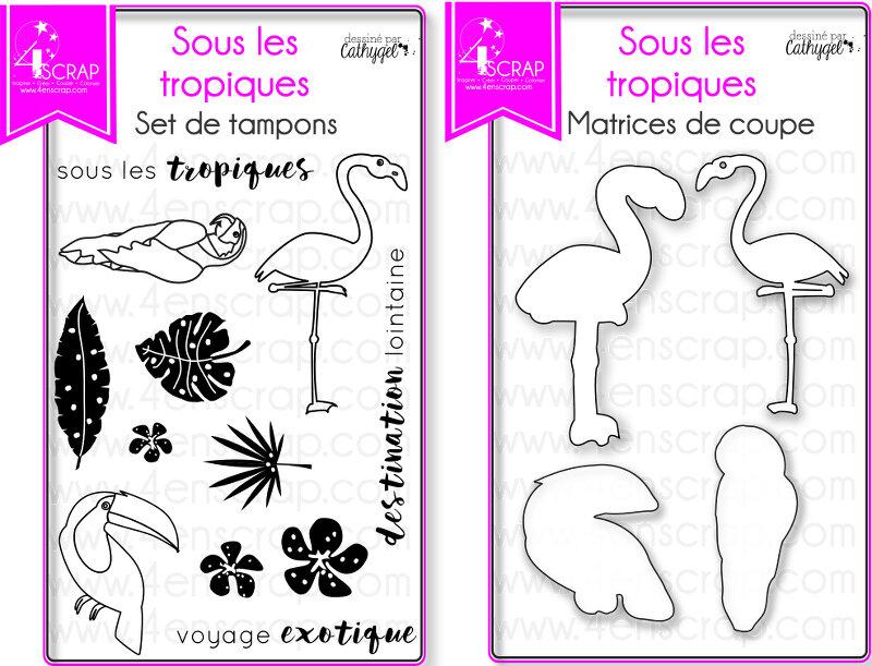 ImageMS7Souslestropiques