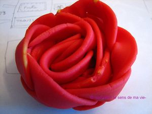 rose_en_pate_2