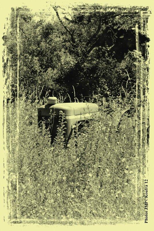 B - Photos JMP©Koufra 12 - Le Caylar - 28062015 - 00306