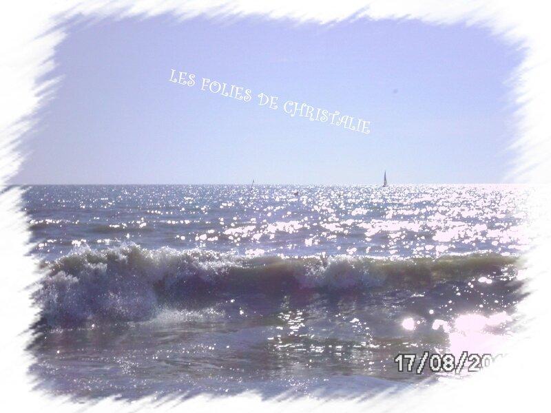 Plage Barbâtre 2012 023
