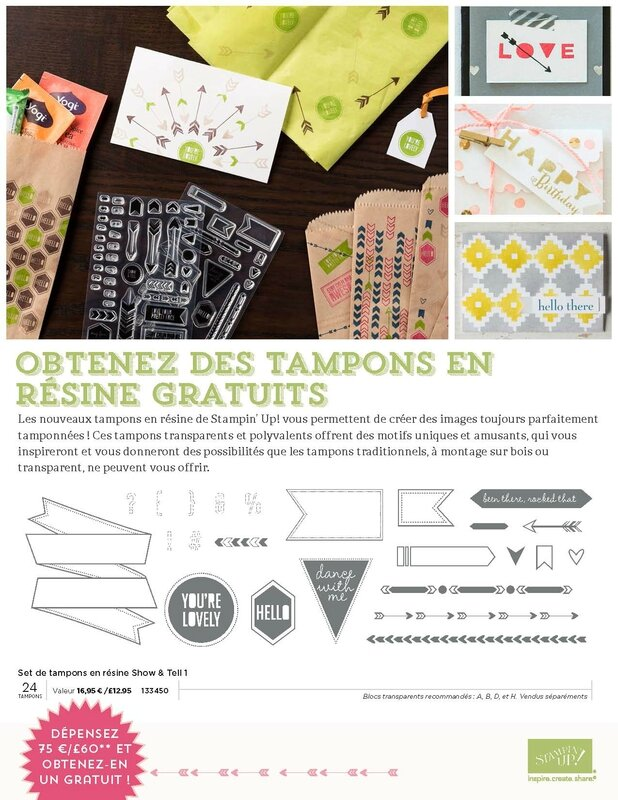 OFFRE TAMPONS RESINES_Page_1