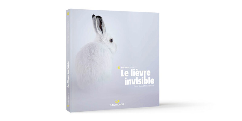 Le-lievre-invisible-couv-1800x900