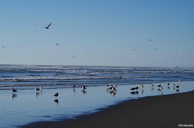 Pacific Beach 5