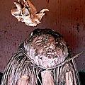 Le grand et puissant maitre marabout medium djifa