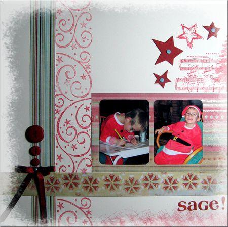 Sage_recadr_
