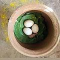 L'œuf mystique du grand maître marabout medium voyant papa atchoukpa