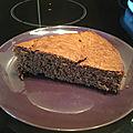 Gâteau moelleux au chocolat express et light thermomix adapté au companion de moulinex