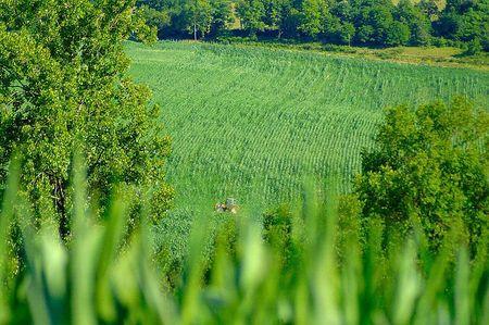 tracteur dans champ vert combiers 2011