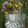 semaine 14 image de printemps