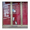 Chat - pain