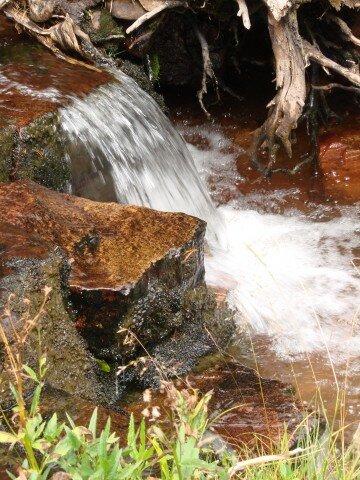 Christmas Meadows, cascade
