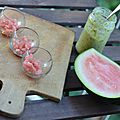 Verrines pastèque et guacamole de la mer {battle food n°22}