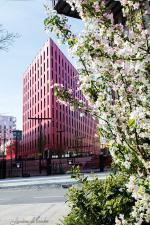 wb_St Etienne immeuble rose_20190418_3195