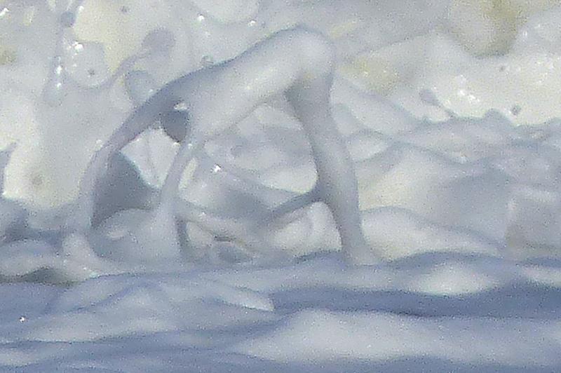 detail de vague et d écume tableau de la nature (1)