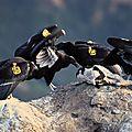 L'intoxication au plomb menace les condors de californie les plus indépendants