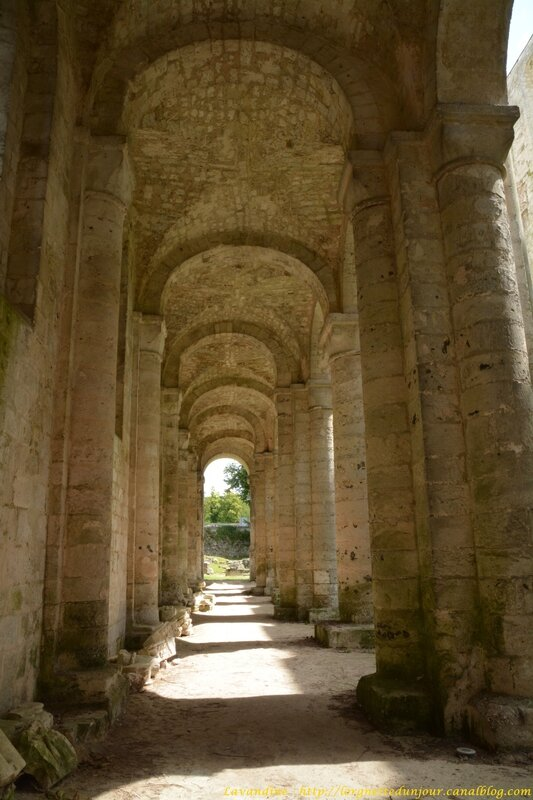 6 jumieges 13 07 16 (14)