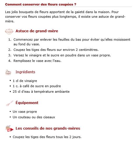 ASTUCES POUR CONSERVER DES FLEURS COUPEES 3