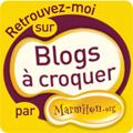 marmiton blog a croquer