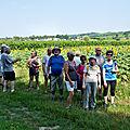 MARCHE dans Caudrot 15 juillet 2018 GG (10)
