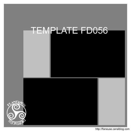 TemplateFD056_Pres