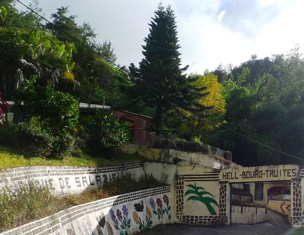 Parc piscicole d'HELLBOURG (1/2) - Les bienfaits de la citronnelle - Recette de la quiche au chou-fleur