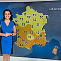 patriciacharbonnier07.2014_02_17_meteotelematinFRANCE2