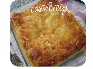 lasagnes_carotte__8_