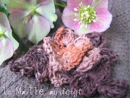 hellebore_crochet_fleur_Katia_03