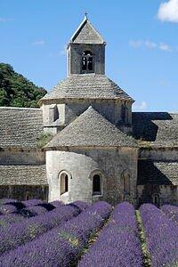 Abbaye_de_Sénanque_-_11