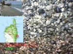 7945 ALERIA PLAGE PADULONE