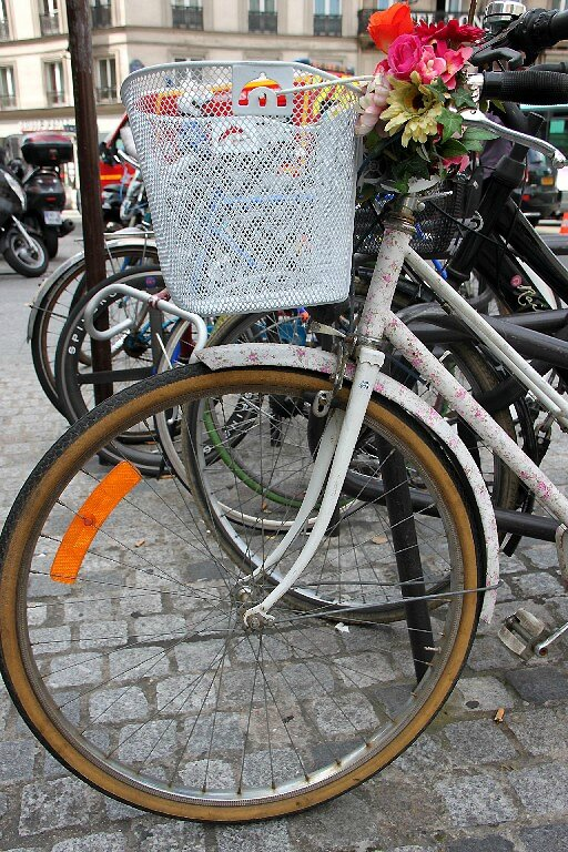 vélo fleuri_5505