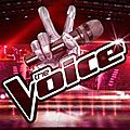 The voice 2016 . les finalistes
