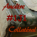 #1j1ancetre - #1j1collateral - 21 août