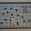 Première carte chien