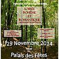 affiche concert 29-112014 v8