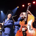 23 The Biscuit Boys